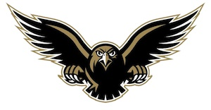 Image of PHS Falcon, School Mascot