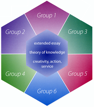 ib theory of knowledge extended essay